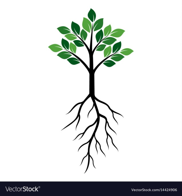 shape-of-green-tree-and-roots-vector-14424906